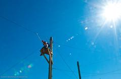 2010 Kalispel Challenge Course-114 (Eastern Washington University) Tags: county school college washington education university spokane native rope course american cheney ropes eastern challenge kalispel