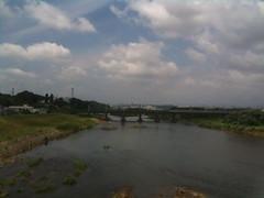 多摩川 是政橋
