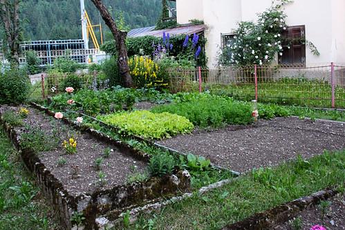 canale garden