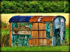 Real Estate (ottosohn) Tags: abandoned germany realestate htte shed shelter sheperd niederrhein bauwagen moers unterstand immobilie rumelnkaldenhausen schferhtte contractorsshed trynka schwafheimermeer ottosohn