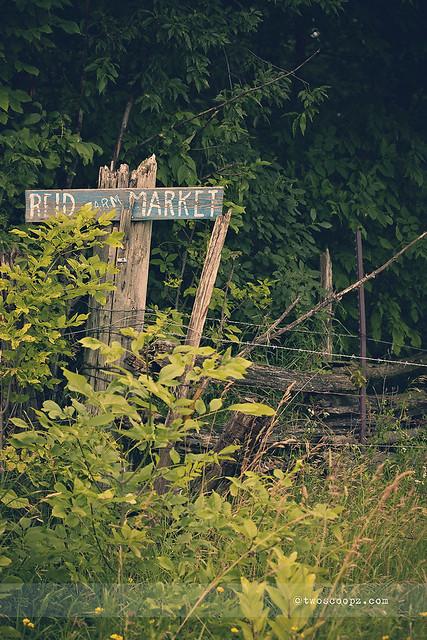 market fence 197/365