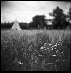 Indian Summer, Limousin 2010 (Kal Khogali Photography) Tags: summer still indian super heat medium format everything 50 rodinal chs the in grows ricohflex adox