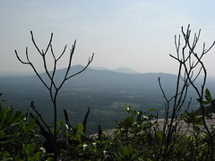 Sauratown Mountains Photo