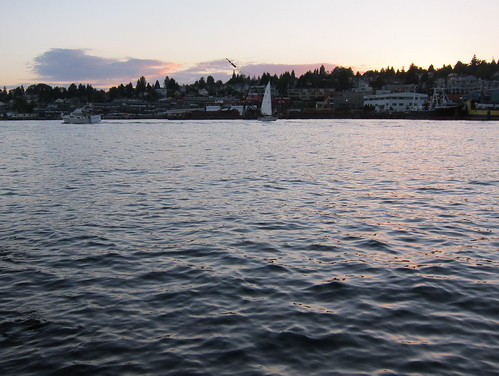 Lake Union, from the South Passage Park