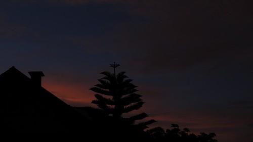 Alabasta silhouette 7