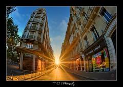 #201/365 Street Light (iPh4n70M) Tags: street light sun paris france french photography soleil photo nikon ray photographer photographie lumière perspective fisheye photograph tc 365 nikkor bp avenue 16mm rue français hdr ballade rayons vendome balade photographe parisienne parisien parisiennes d700 9raw tcphotography baladesparisiennes ph4n70m iph4n70m tcphotographie