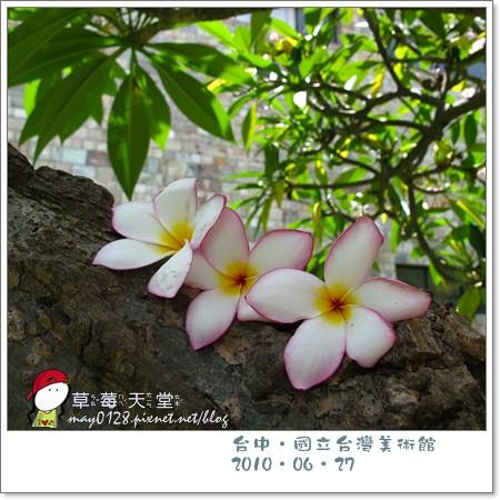 台中國美館90-2010.06.27