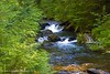 Morning On Quartz Creek (jimgspokane) Tags: idaho runs brooks creeks quartzcreek rills onlythebestare