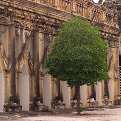 mys000218.jpg (Keith Levit) Tags: trees sculpture tree stone architecture square asian religious temple photography carved ancient shrine asia exterior symbol burma buddhist stonework faith fineart religion pillar columns buddhism carving architectural temples myanmar column symbols paya ornate oriental orient pillars burmese religions sculptures carvings bagan decorated buddhistic levit faade keithlevit keithlevitphotography