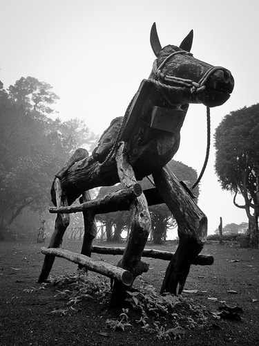 Los Volcanos NP 03 - Wooden horse in the thick fog 2