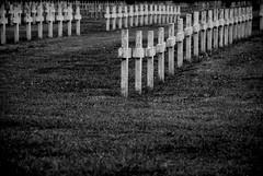 Necropole (Christophe Aude) Tags: bw france blackwhite nikon noir lyon noiretblanc mort champs combat guerre blanc soldat croix tombe noirblanc execution rhone resistants necropole combattant doua guerremondiale feyssine francelandscapes