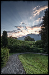 Daybreak pt2 (Sam Sherbini) Tags: sky mountains nature grass sunrise landscape vines path interlaken hdri facebook spiez