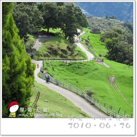 清境小瑞士花園30-2010.06.26