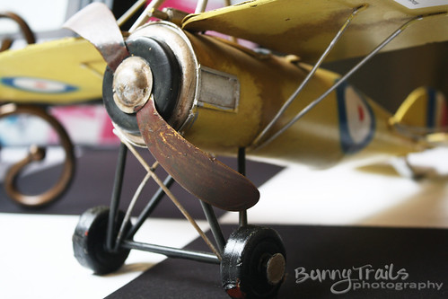 207-yellow plane