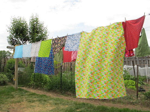 Drying some fat quarters on the line