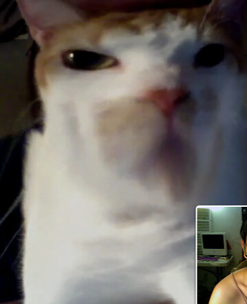 webcamming w/ stella