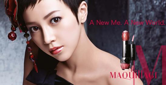Shiseido Maquillage iconq
