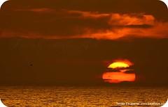 ATARDECER EN TIJUANA. (Tomasescalante) Tags: california sea sun art sol canon mexico mar agua amarillo baja tijuana tarde mex tomasescalante bajafotos