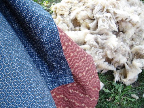 gobs of wool
