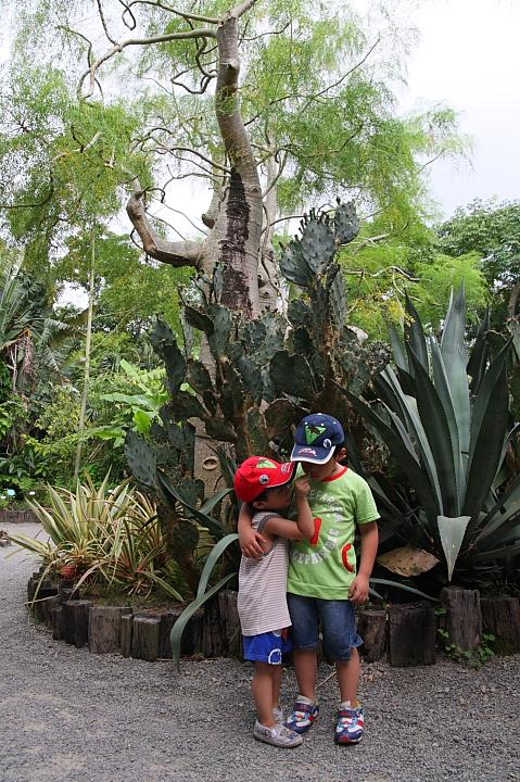綠世界生態農場0020