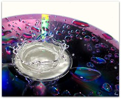 :0) (Pink Flutterby   OFF) Tags: color colour macro wet water colors canon droplets dvd drops colorful colours sink drop powershot drip droplet crow colourful splash disc splashes sx120is sx120