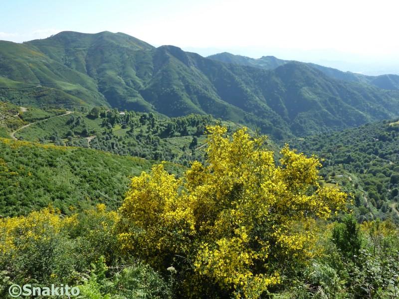 الجمال الطبيعي الرباني للجزائر 4879377813_36499475d