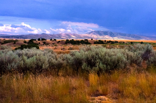 New Image Painting Idaho Falls