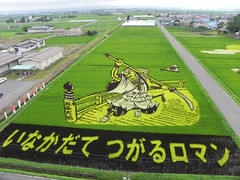 (Stop carbon pollution) Tags: art japan rice   touhoku    aomoriken cycletouring   inakadate