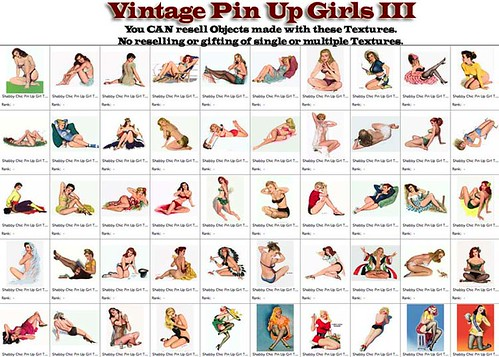 Shabby Chic Vintage Pin Up Girls III