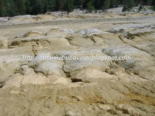 Rezervatia geologica de calcare  triasice Paraul Cailor  (4)