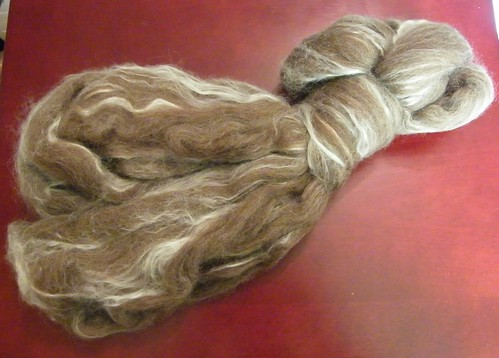 BFL/Silk Fibre