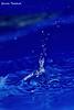 A pequena sereia (Yuricka Takahashi) Tags: brazil water água brasil minas gerais drop mg gotas takahashi horizonte bh belo d90 yuricka