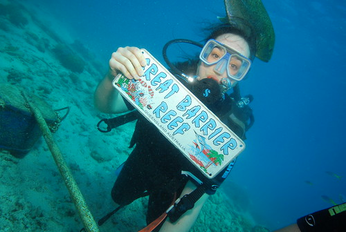 GBR dive