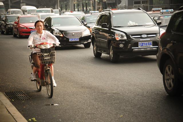 Beijing 2010 [38]