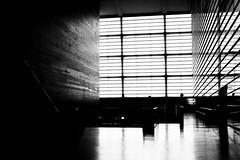 En blanco y negro (Meligunis [the island inside]) Tags: architecture sansebastian euskadi paisvasco kursaal rafaelmoneo paesibaschi
