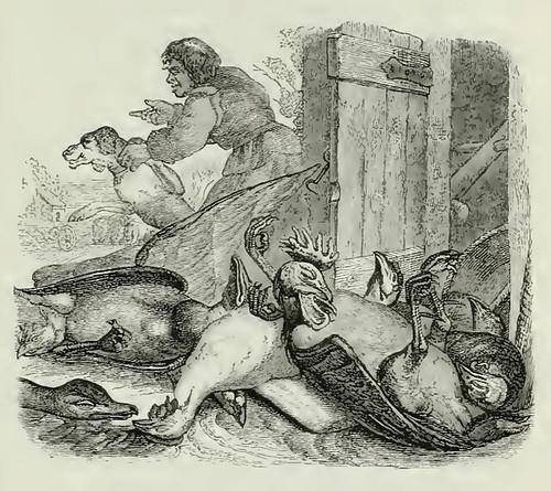Rusticus et Canis
