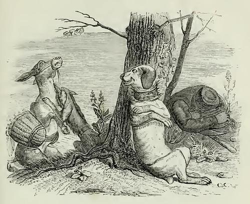 0817 Asinus et Canis