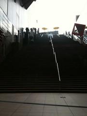 京都駅大階段下で再会