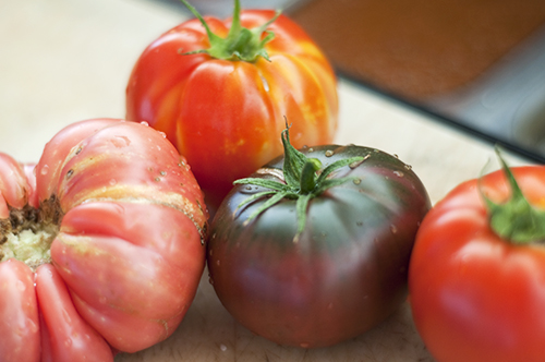 gott's tomatoes - fresh from the vine