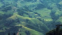 (_blackscorpion_) Tags: mountain green canon landscape eos vietnam 1ds sapa blackscorpion canonef200mmf28lusm hoanglien