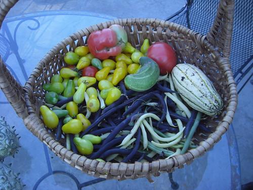 Bountiful Garden Harvest