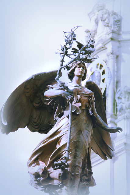 Stature - Cardiff Angel