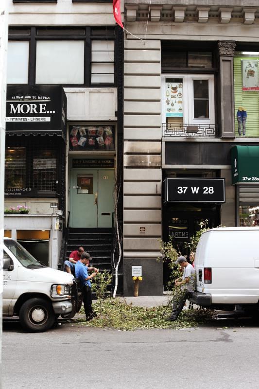 W 28th Street Florists (New York, NY)