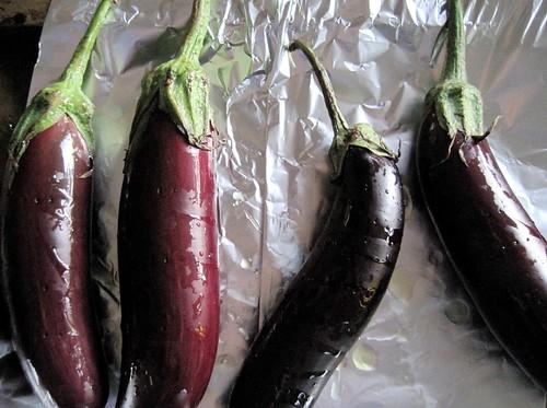 eggplanties