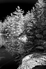 Lake's edge (faux infrared)
