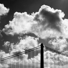 Fly Away Home (Thomas Hawk) Tags: sanfrancisco california bridge bw usa clouds unitedstates unitedstatesofamerica baybridge fav10 natureshand