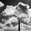 Fly Away Home (Thomas Hawk) Tags: sanfrancisco california bridge bw usa clouds unitedstates unitedstatesofamerica baybridge fav10 natureshand