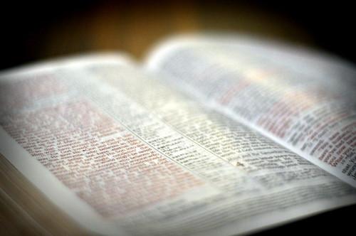 1/365 - For God So Loved the World..
