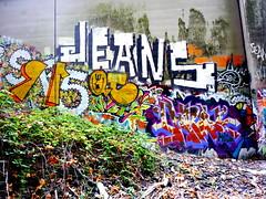 Jeans, Hesh, Spf 15 QT, Hops MLS