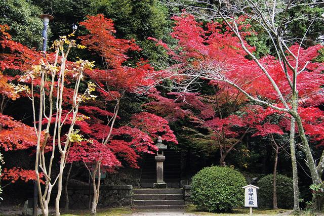 101115_094815_霊山寺